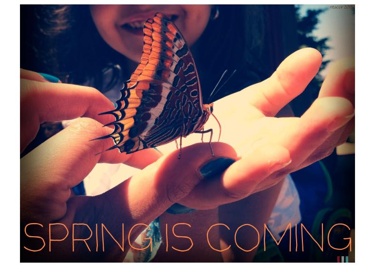 spring is coming-page-001