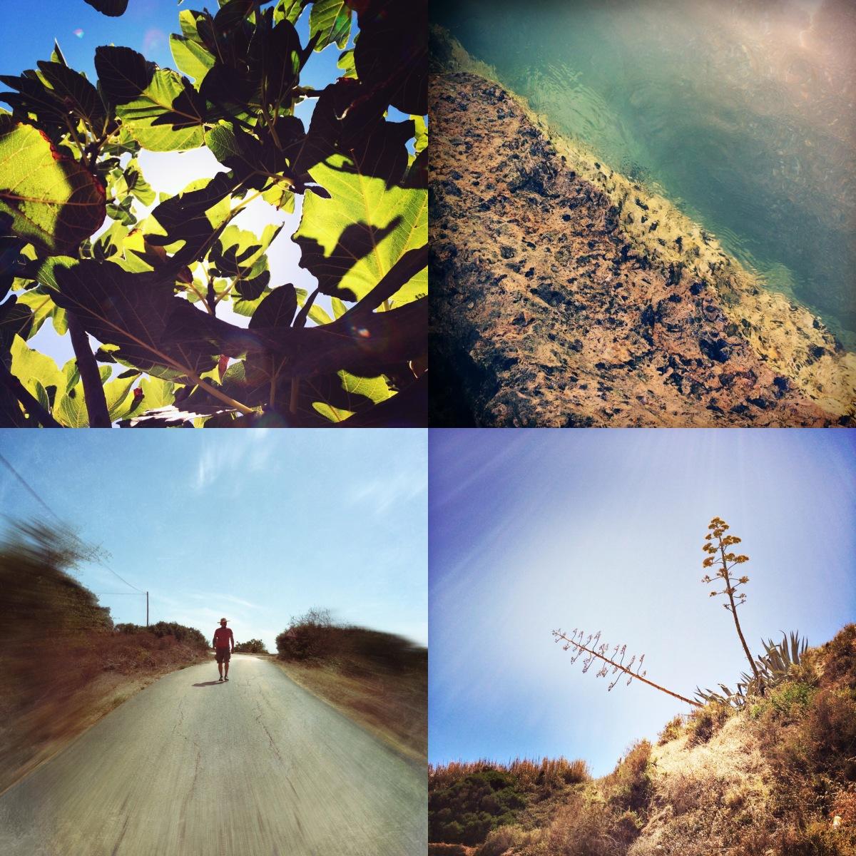 Algarve - o poema